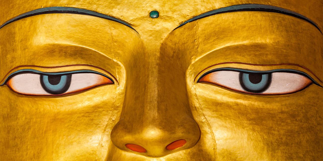 monastere-dorje-pamo-lavaur-france-moniales-ordination-premiers-pas-yeux-bouddha